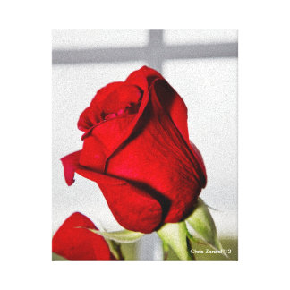 Valentine Red Rose Stretched Canvas Print