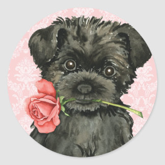 Valentine Rose Affenpinscher Classic Round Sticker