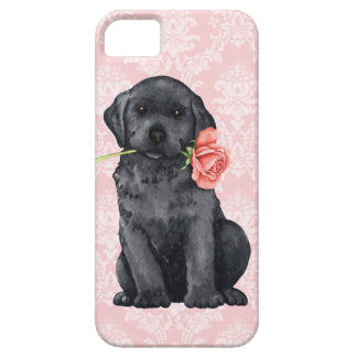 Valentine Rose Black Lab Barely There iPhone 5 Case