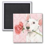 Valentine Rose Bull Terrier Square Magnet