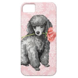 Valentine Rose Miniature Poodle iPhone 5 Cover