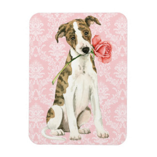 Valentine Rose Whippet Rectangular Photo Magnet