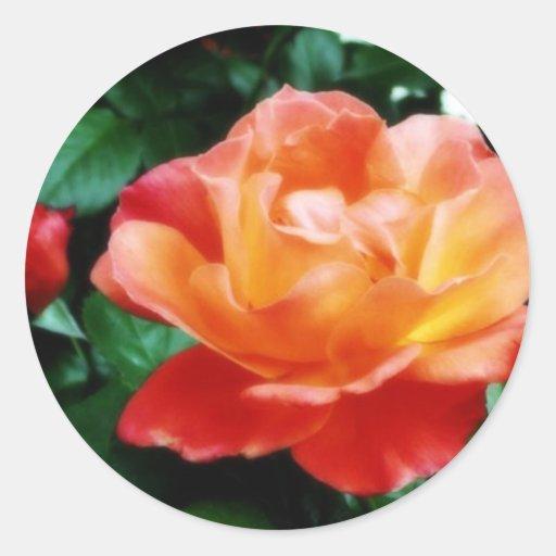 Valentine Sweetheart Rose Sticker