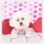 Valentines - Bichon Frise - Lilly Square Sticker