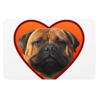 Valentine's bullmastiff rectangular photo magnet