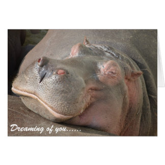 Valentine's Day Card - Smiling Hippo