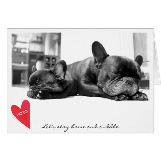 Valentine's Day Cute French Bulldog Photo Cuddle Greeting Card