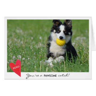Valentine's Day Dog Photo You're a Pawsome Catch Greeting Card