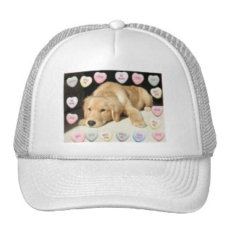 Valentine's Day Golden Retriever Hats