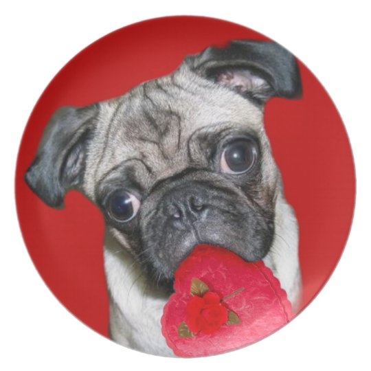 Valentine's Day pug decorative plate