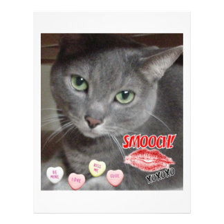 Valentine's Day Russian Blue Gray Cat Full Color Flyer