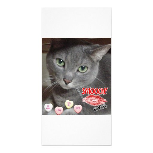 Valentine's Day Russian Blue Gray Cat Personalized Photo Card