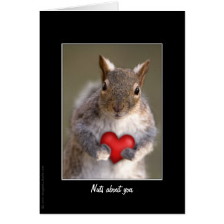Valentine's Day Squirrel Greeting & Note Cards