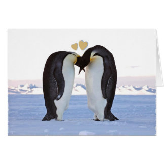 Valentine's Day, Two Penguins - Two Hearts Greeting Card