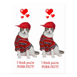 Valentines for School Kids Postcard