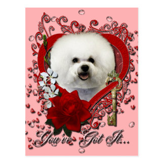 Valentines - Key to My Heart - Bichon Frise Postcard