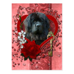 Valentines - Key to My Heart - Newfoundland Postcard