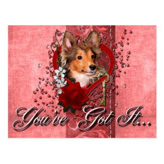 Valentines - Key to My Heart - Sheltie - Cooper Postcard