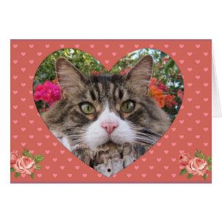 Valentine's Kitty Card