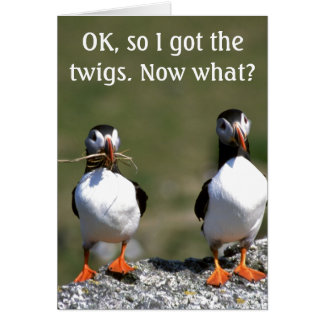 Valentine's Puffin Pair 'got the twigs' card