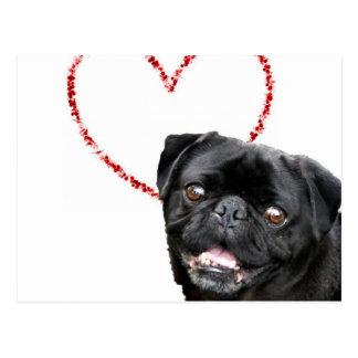 Valentine's pug dog postcard