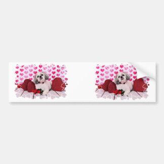 Valentines - Shih Tzu - Teddy Bumper Sticker