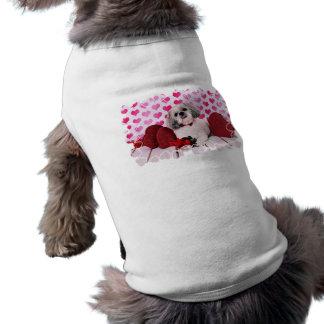 Valentines - Shih Tzu - Teddy Doggie Shirt