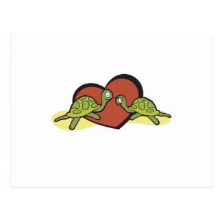 Valentines Turtle Love Postcard