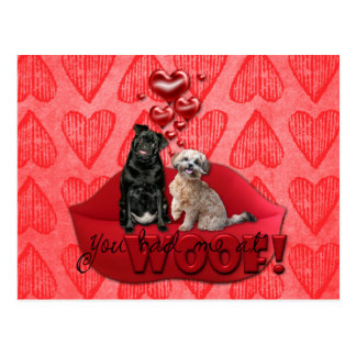 Valentines - You Had Me at Woof! Postcard