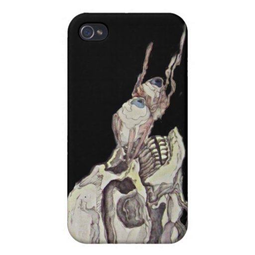 Valley of Dry Bones Case For iPhone 4