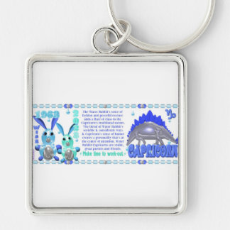 Valxart 1963 Water Rabbit zodiac born Capricorn Silver-Colored Square Key Ring