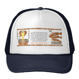 Valxart 2001 1941  2061 zodiac MetalSnake Pisces Hats