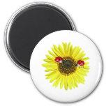 Valxart Happy Lady Bugs on yellow sunflower Magnet