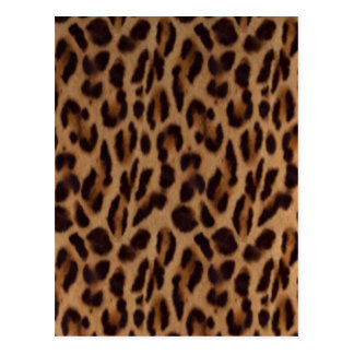 Valxart Leopard illusion Postcard