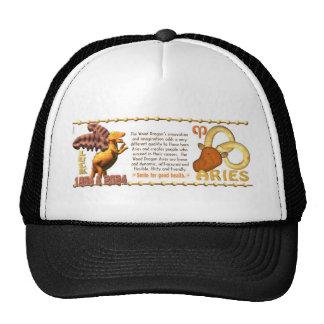 ValxArt Zodiac wood dragon born Aries 1964 2024 Hats
