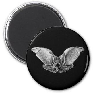 Vampire ? Bat ? Magnet