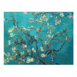 Van Gogh Almond Blossoms Postcard