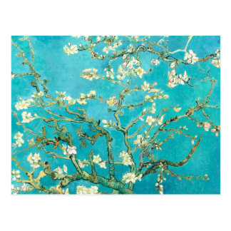 Van Gogh Almond Blossoms Postcard