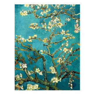 Van Gogh Almond Blossoms Tree Postcard