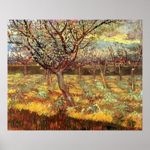 Van Gogh Apricot Tree in Blossom, Vintage Fine Art Poster