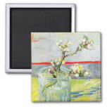Van Gogh Art, Blossoming Almond Branch in a Glass Square Magnet