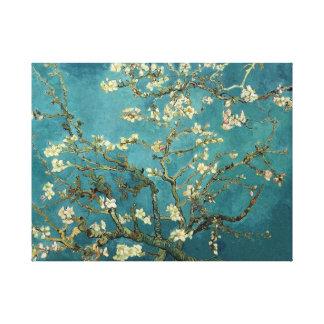 Van Gogh Blossoming Almond Tree Canvas Canvas Print