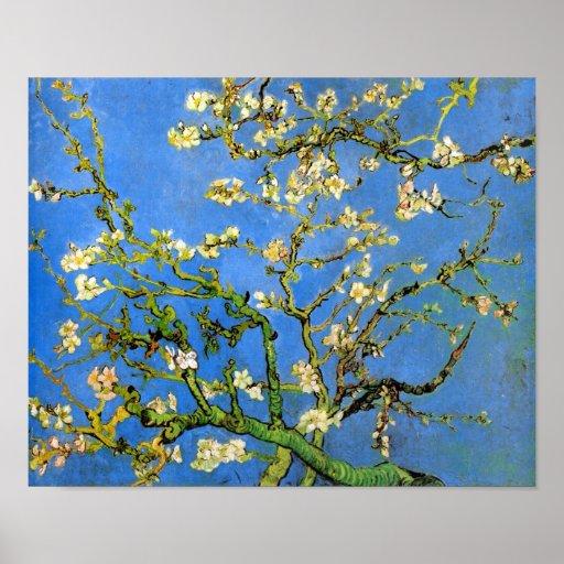 Van Gogh Blossoming Almond Tree Poster