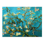 Van Gogh Blossoming Almond Tree Vintage Fine Art Post Cards