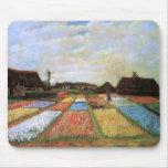 Van Gogh Bulb Fields Holland (F186) Fine Art