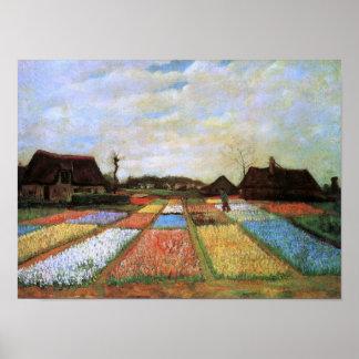 Van Gogh Bulb Fields Holland (F186) Fine Art Posters