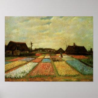 Van Gogh Bulb Fields Holland (F186) Fine Art Poster