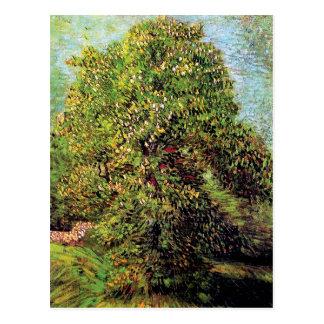 Van Gogh - Chestnut Tree In Blossom Post Cards