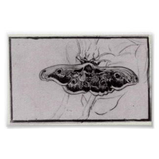 Van Gogh - Death's Head Moth Poster