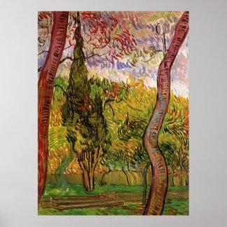 Van Gogh Garden of Saint Paul Hospital, Fine Art Poster